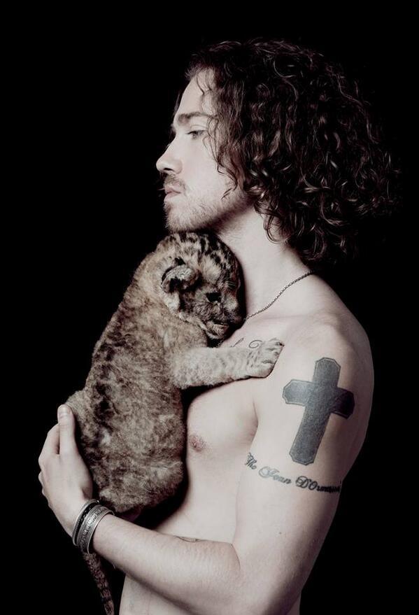 Julien doré lion lionceau love